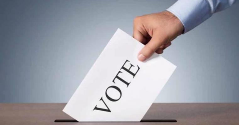 Board election 2019